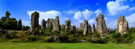 瓷森林石头 库存照片