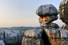 瓷森林s石头 图库摄影