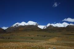 瓷横向本质西藏 免版税库存照片