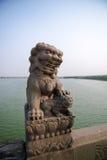 瓷狮子南京替补石头 图库摄影