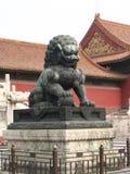 瓷狮子男 库存图片