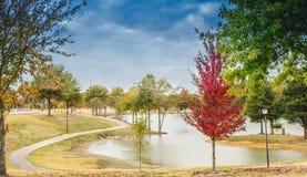 瓷秋天横向公园新疆 免版税图库摄影
