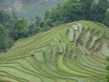 瓷米大阳台yuanyang云南 免版税库存照片