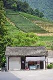 瓷茶村庄 库存照片