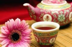 瓷集合茶 库存照片