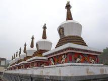 瓷青海tar寺庙 图库摄影