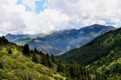 瓷高原s风景西藏 免版税图库摄影