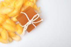 甘油桑蚕茧和蜂蜜肥皂 免版税库存图片