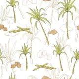 甘蔗图表颜色无缝的样式剪影例证 库存图片
