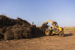 甘蔗拖拉机装货 免版税图库摄影