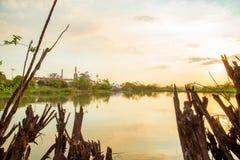 甘蔗日落种植园 库存图片
