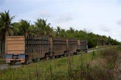甘蔗运输卡车 库存照片