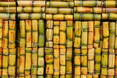 甘蔗 免版税图库摄影
