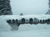 甚而最热诚的邮递员的一个重的冬天 免版税库存照片