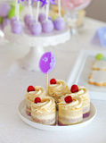 甜假日自助餐用杯形蛋糕和蛋糕流行音乐 库存照片