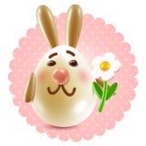 甜兔子congtatulations 免版税库存照片