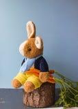 甜兔宝宝用三棵橙色红萝卜 免版税库存图片
