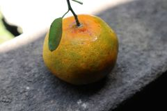 甜和新鲜的桔子 免版税库存照片