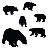 甜和美丽的熊 皇族释放例证