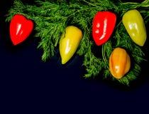 甜多色胡椒用以新年树的分支的形式莳萝 圣诞节莳萝分支装饰用甜椒 免版税图库摄影