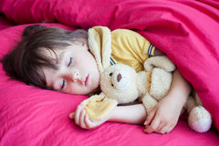 甜小男孩,睡觉与他的玩具熊的下午 免版税图库摄影