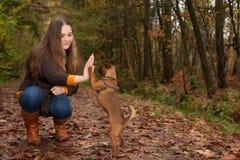 甜少年和她的狗 免版税库存图片
