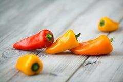 甜微型有机辣椒粉红色、黄色和桔子在木背景 免版税库存图片