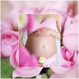 甜怀孕 免版税库存图片