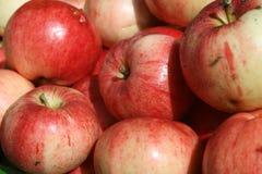 甜桃红色苹果 免版税库存照片