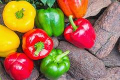 甜椒被分类的五颜六色的品种  免版税库存图片