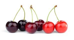 甜樱桃不同的品种  免版税库存照片