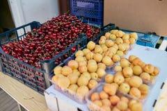 甜樱桃和杏子在一个农厂市场上在城市 水果和蔬菜在农夫市场上 在箱子的樱桃和 免版税图库摄影
