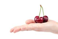 甜樱桃果子在女性手上 免版税图库摄影