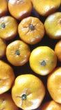 甜橙混杂的backround 库存图片