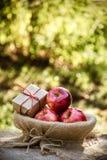 甜水多的苹果和一个礼物盒在篮子 秋天果子 收获秋天礼物 图库摄影