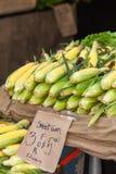 甜玉米在市场上 库存图片