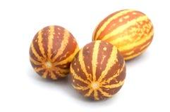 甜瓜 免版税库存图片