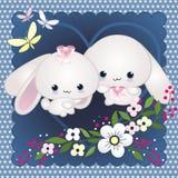 甜的兔宝宝 免版税库存图片