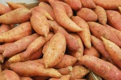 甜的土豆 免版税图库摄影