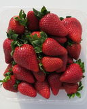 甜的草莓 免版税图库摄影