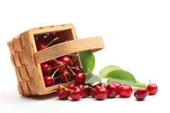 甜篮子的樱桃 免版税库存照片