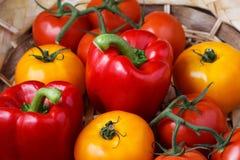 甜红辣椒和黄色蕃茄的构成 免版税库存图片