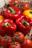 甜红辣椒和黄色蕃茄的构成 库存照片