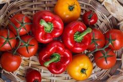 甜红辣椒和黄色蕃茄的构成 免版税库存照片