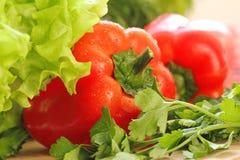 甜红辣椒用新鲜的沙拉 免版税库存图片
