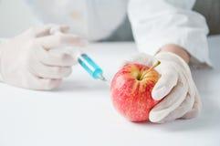 甜苹果,遗传工程 免版税库存图片