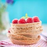 甜莓果子馅饼 库存图片
