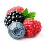 甜莓果特写镜头 库存图片