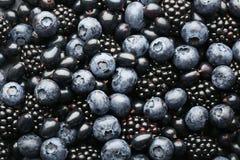 甜莓果 免版税图库摄影