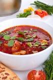 甜菜红色汤蔬菜 库存照片